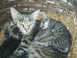 4 maluszki i mama